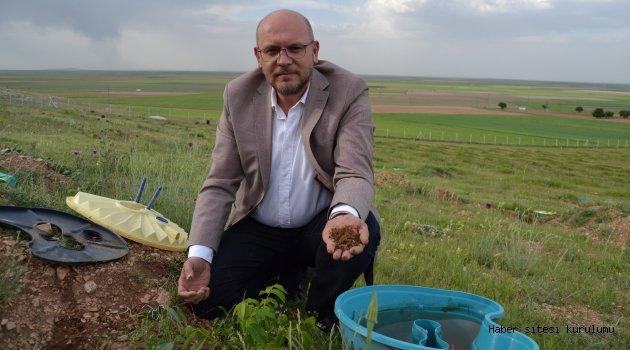 Sulamasız tarıma imkan veren ürün geliştirdiler
