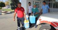 Şehit polisin organları 3 kişiye umut olacak