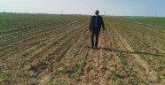 KONUK; TARLADA İŞLER DEVAM EDİYOR, BAYRAM GELİYOR,  KONYA ŞEKER 57 MİLYON 210 BİN TL NAKİT AVANS DESTEĞİ VERİYOR